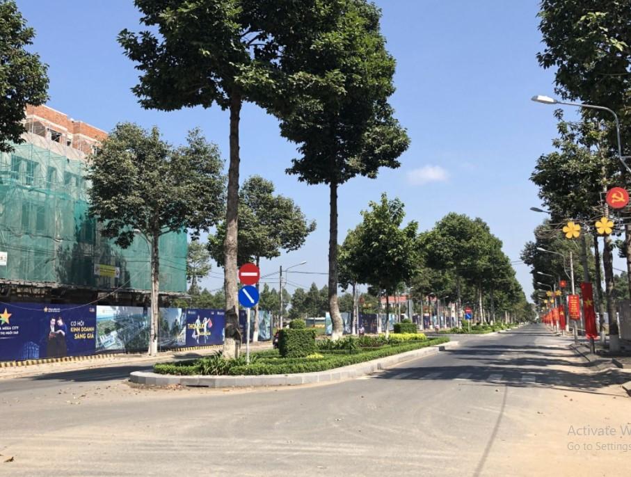 Stella Mega City - Những hàng cây xanh trên trục đường chính