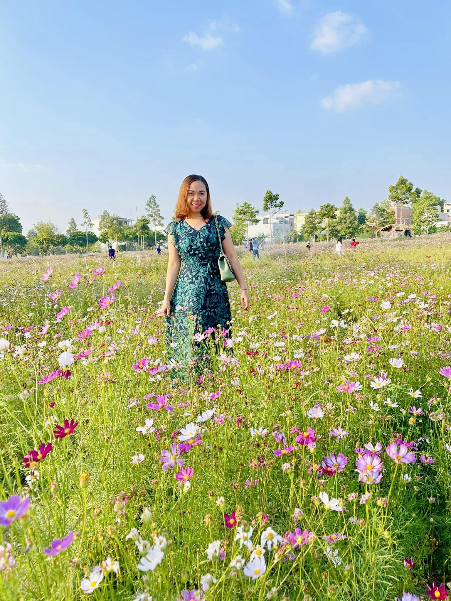Vườn hoa sao nhái dự án Stella Mega City